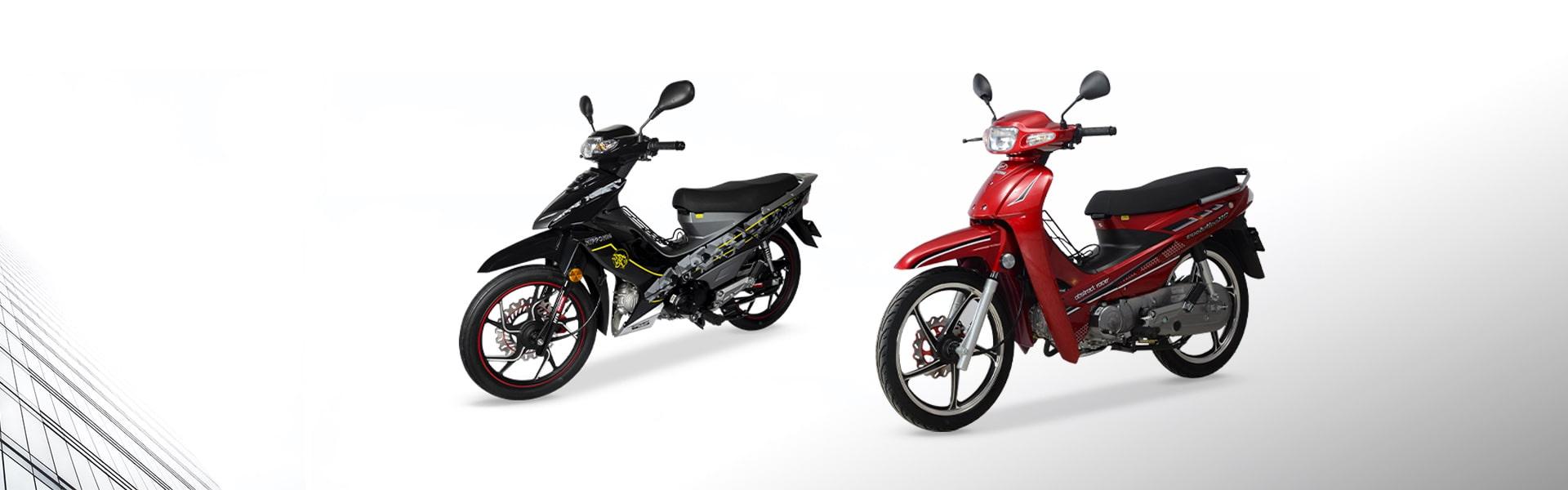 Nipponia Motocicletas de Tipo Cub