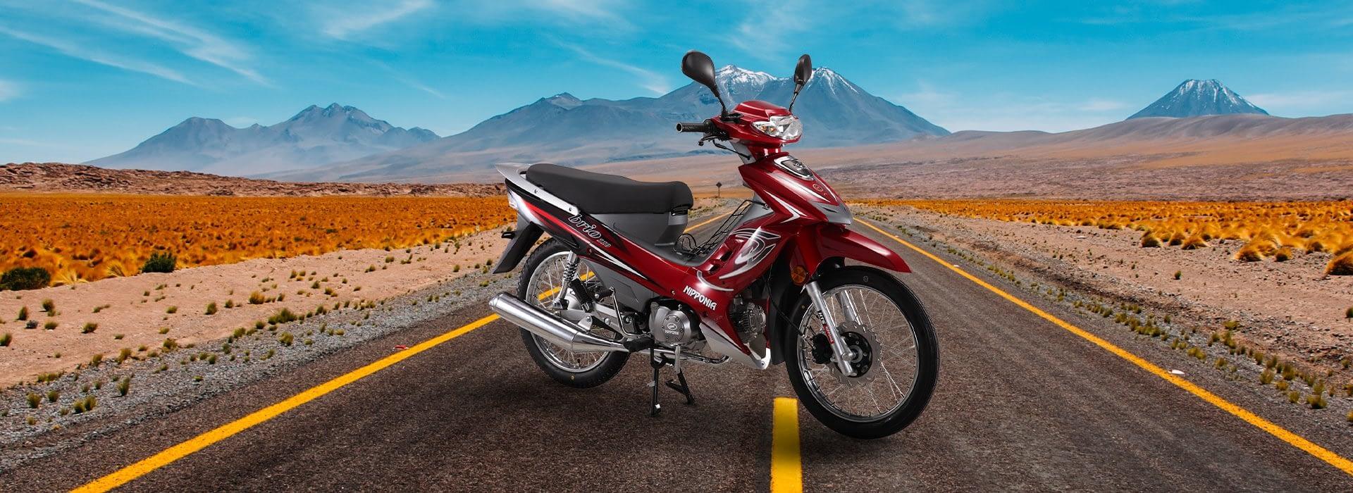 Nipponia Brio 110 Aros de Rayos Cub Moto