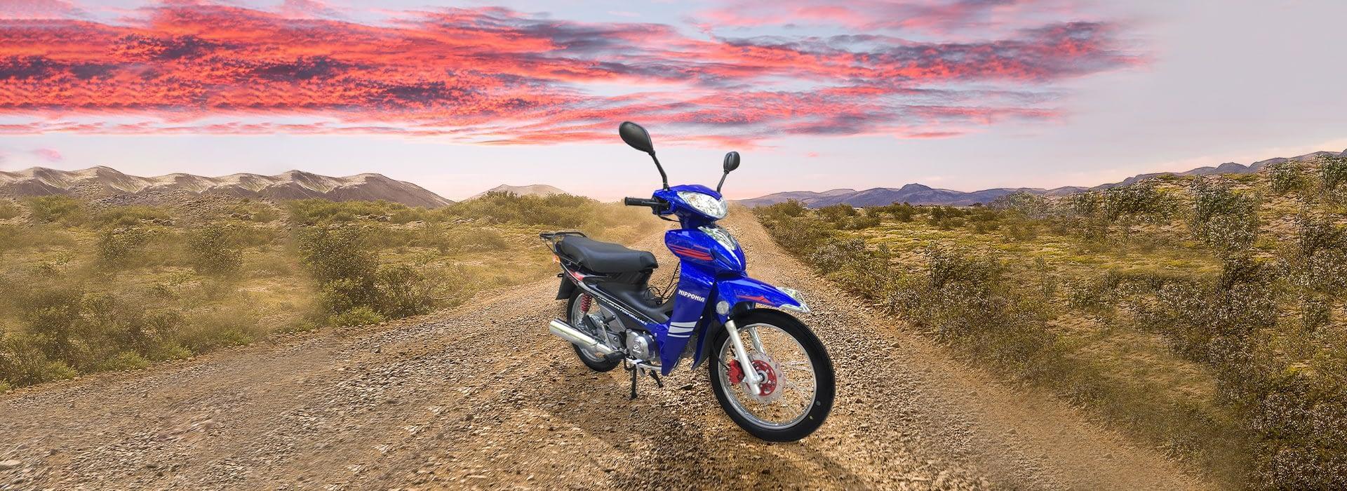 Nipponia NC 110 Cub Moto