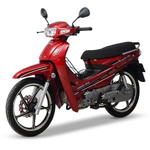 Nipponia Evolution 110